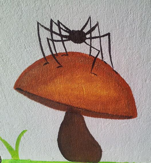 grosse araignée