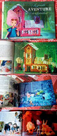 le livre crée avec les enfants