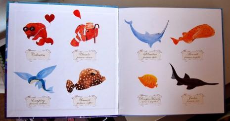 photo des poissons avec son prénom et son espèce